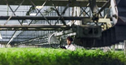 Sustainable Finance | SEB